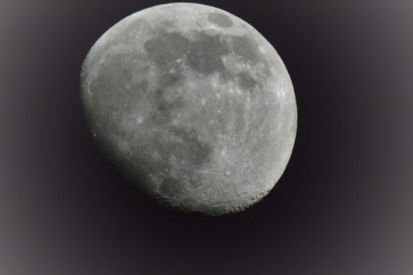 April Moon Not Quite Full