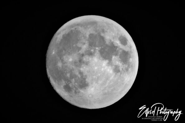 July's Almost Full Moon